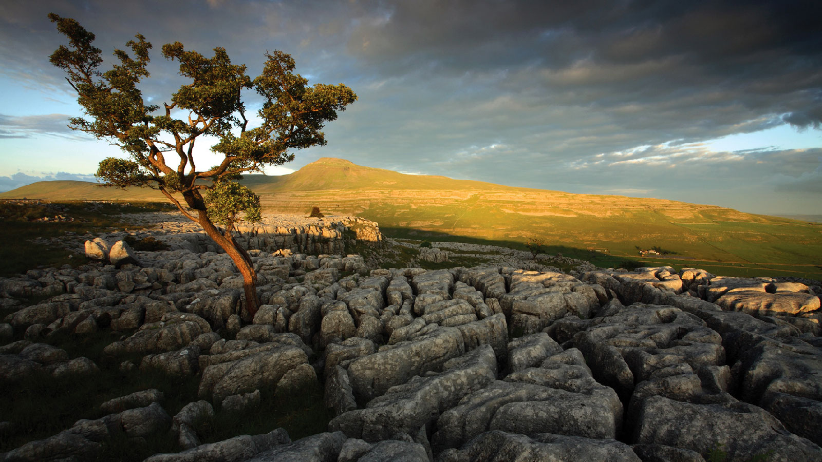 photo of the view across limestone pavement across the dale to white scar caves